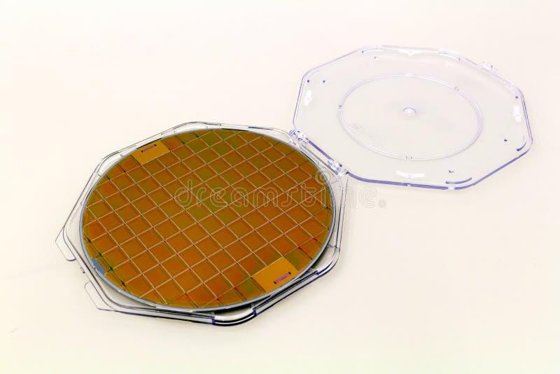 As bolachas de silicone na caixa plástica do suporte em uma bolacha da tabela A são uma fatia fina de material do semicondutor, t fotografia de stock royalty free