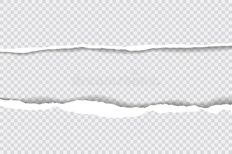 As bordas de papel rasgadas, fundo sem emenda texture horizontalmente, vetor isoladas no espaço para anunciar, bandeira do página ilustração royalty free