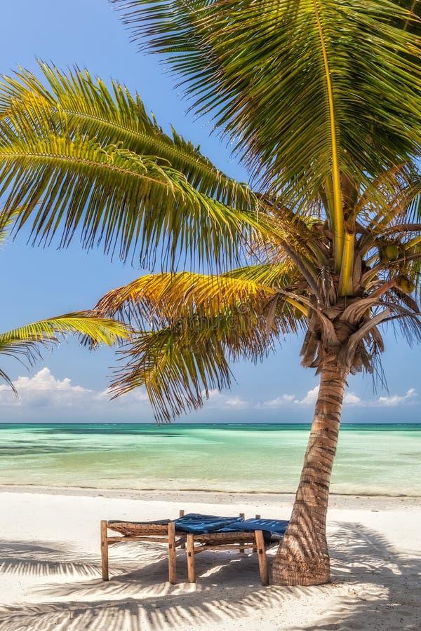 As cadeiras de sala de estar da praia sob a palmeira saem na costa da Índia imagens de stock royalty free