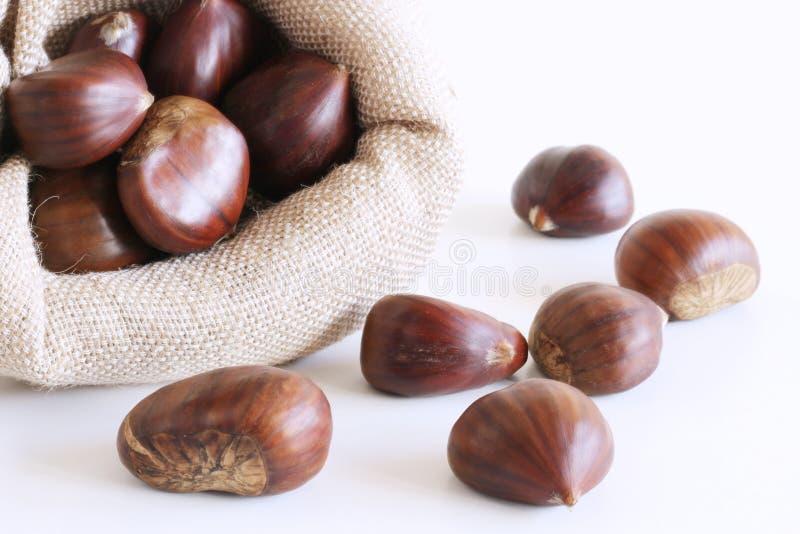 As castanhas frescas no saco ensacam no fundo branco Conceito do alimento saudável e sazonal Autumn Decorations fotografia de stock