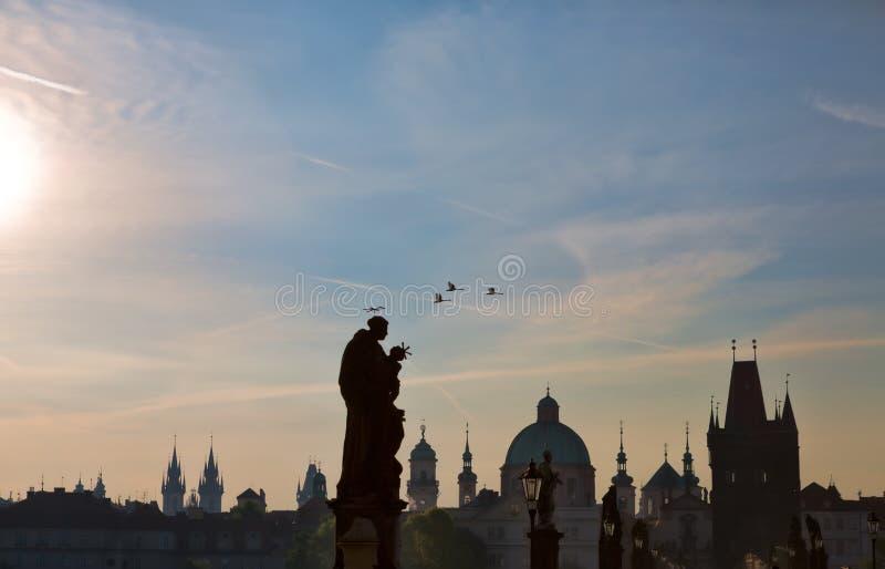 As cisnes voam sobre Charles Bridge em Praga imagens de stock