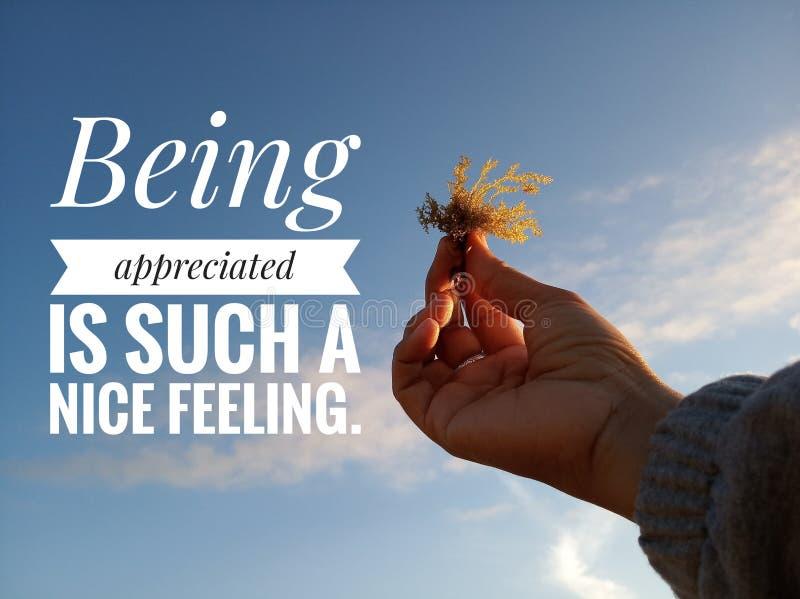 As citações inspiradores inspiradas que estão sendo apreciadas são um sentimento tão agradável Com as mãos da jovem mulher que ma imagens de stock royalty free