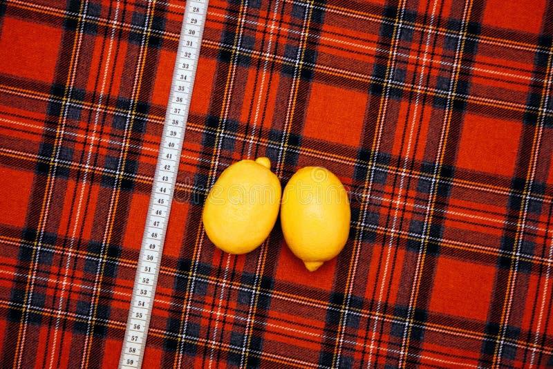 As coisas diferentes do alfaiate da oficina do projeto da gaiola do homem da costura de lãs da tela da linha colorem da gaiola a  fotografia de stock