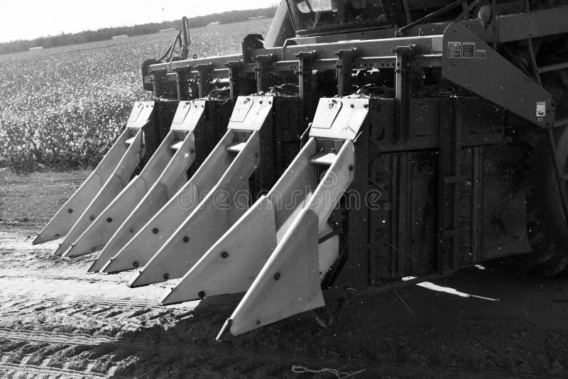 As colheitas da máquina desbastadora de algodão descaroçam o preto e o wight imagem de stock royalty free