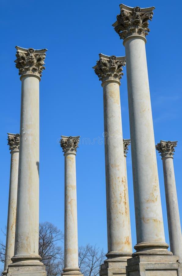 As colunas do Capitólio no arboreto nacional no Washington DC contra um céu azul imagem de stock royalty free