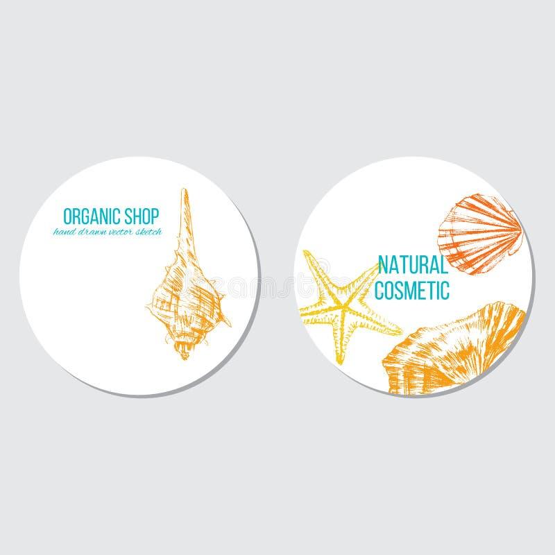 As conchas do mar entregam o esboço tirado da cor do vetor isoladas no fundo branco, quadro redondo, etiqueta marinha decorativa  ilustração royalty free
