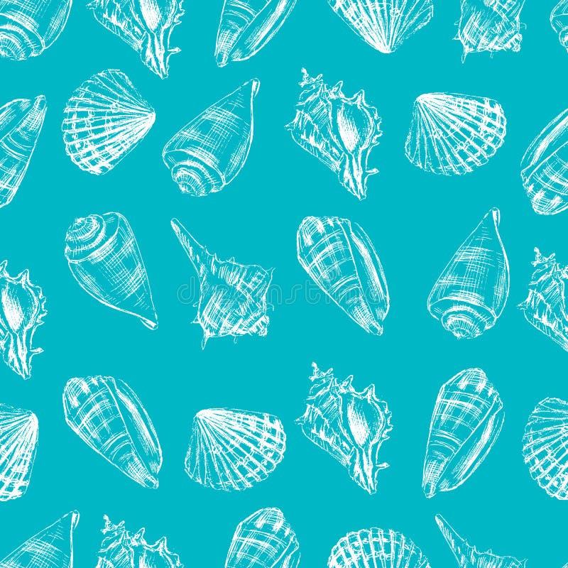 As conchas do mar entregam o esboço tirado gravura a água-forte do gráfico de vetor isoladas no fundo branco, teste padrão sem em ilustração royalty free