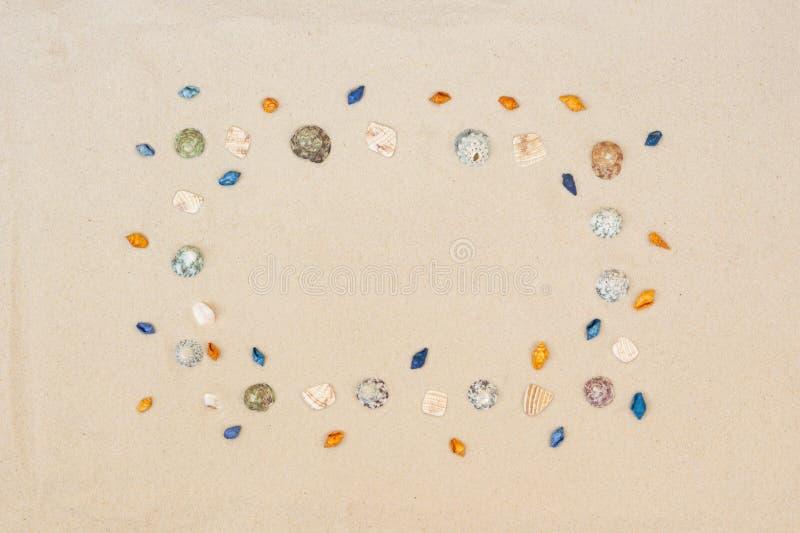 As conchas do mar moldam no fundo da areia da praia O litoral natural textured a vista de superf?cie, superior, espa?o da c?pia fotografia de stock royalty free