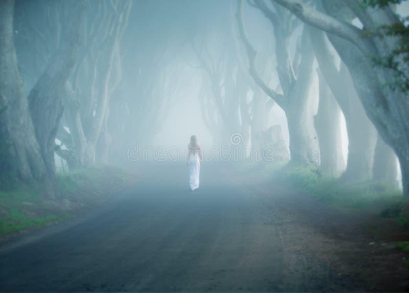 As conversão escuras, Irlanda, árvore do fogy alinharam a estrada, caminhada da mulher afastado no vestido longo branco fotografia de stock royalty free