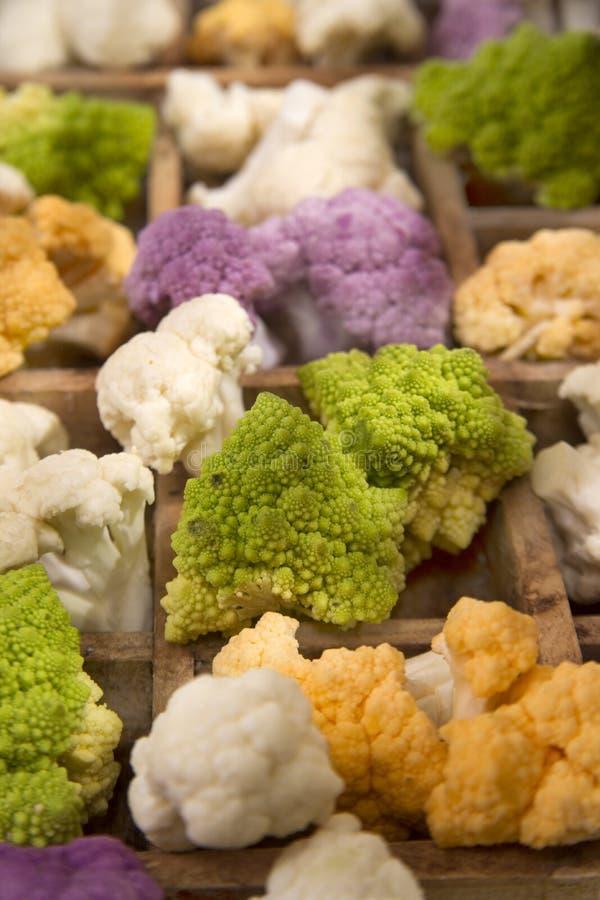 As cores da couve-flor imagens de stock