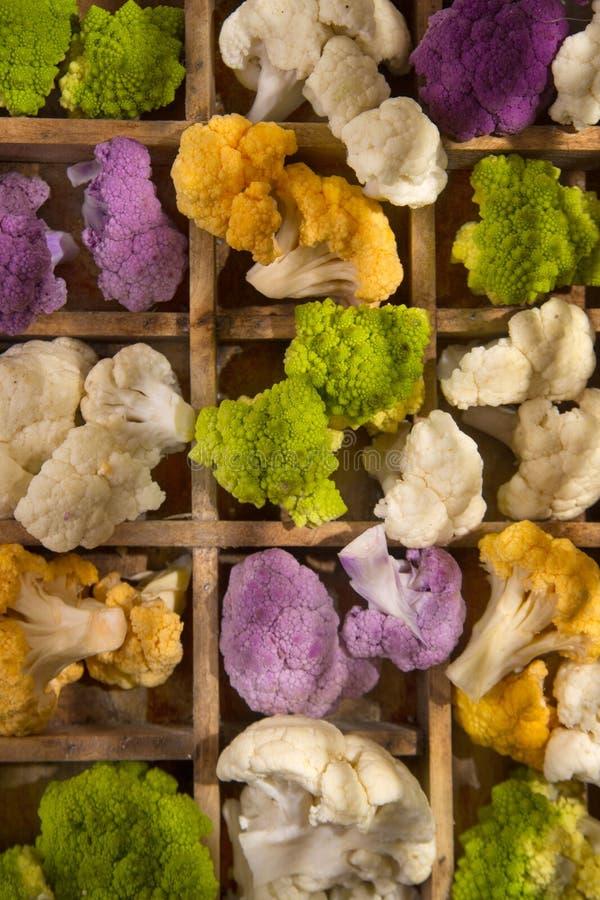 As cores da couve-flor imagens de stock royalty free