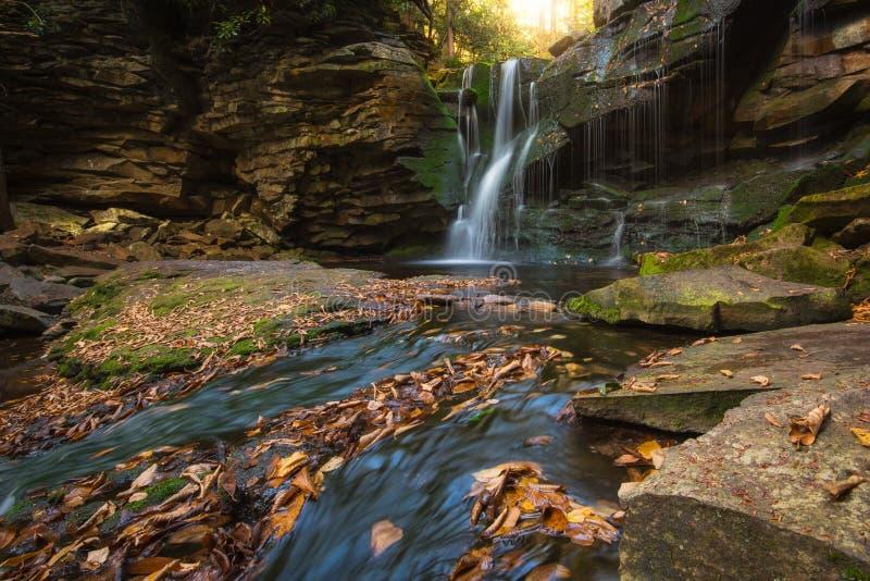 As cores do outono em Elakala caem em West Virginia imagem de stock royalty free