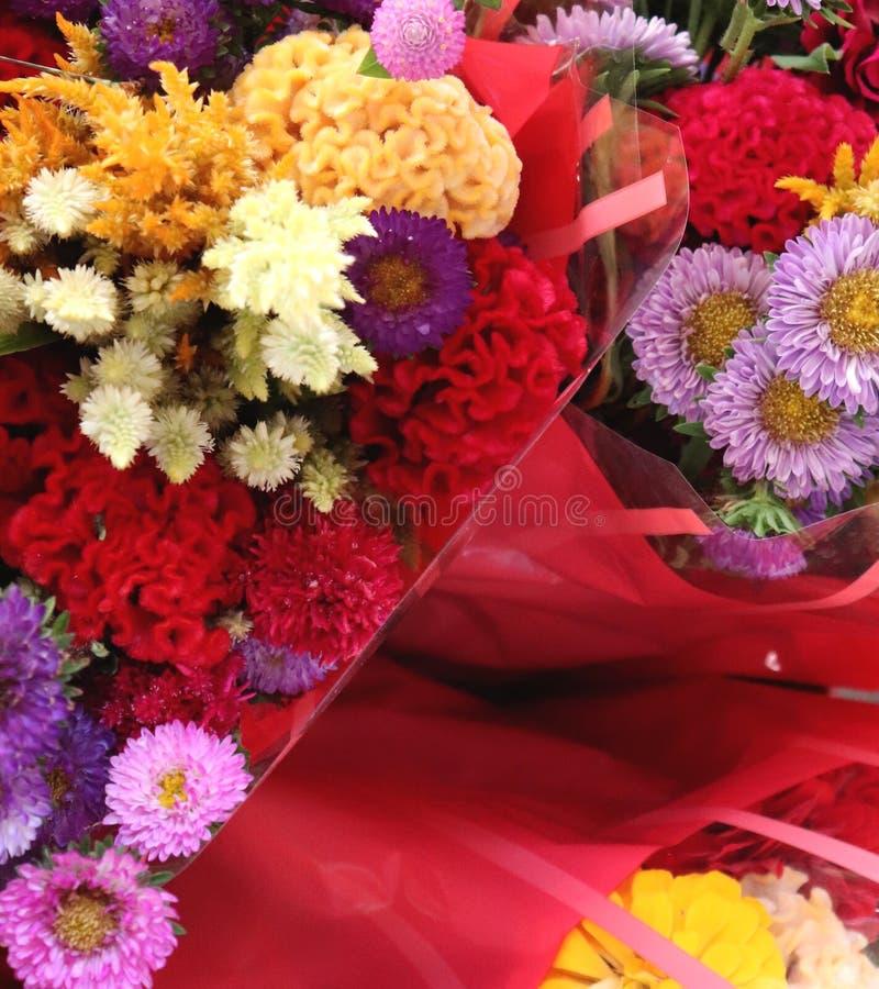 As cores vívidas do arranjo de flor secado têm o fator do wow foto de stock