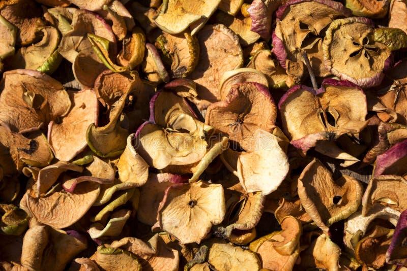 As corrediças cortaram finamente as maçãs que secam no sol, o fundo foto de stock royalty free