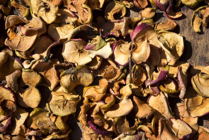 As corrediças cortaram finamente as maçãs que secam no sol, o fundo imagens de stock royalty free