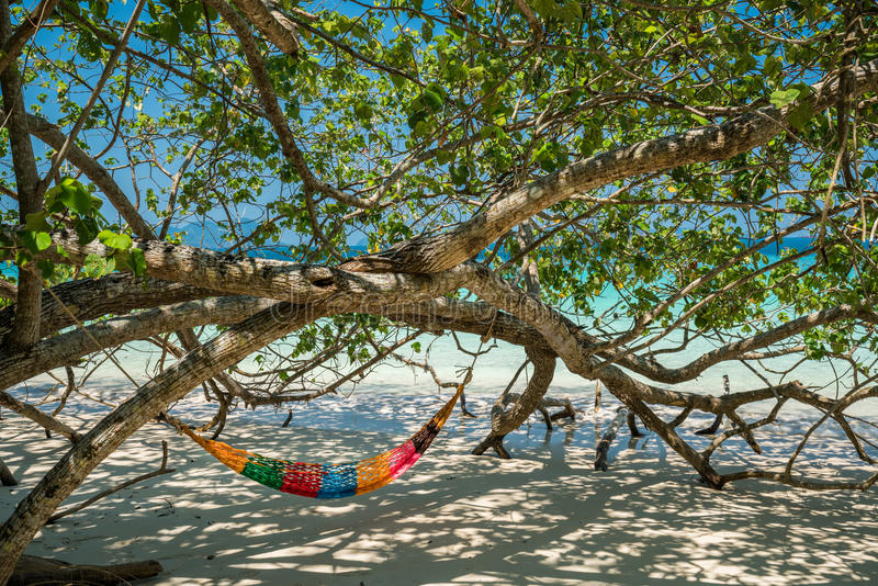 As correias da árvore da rede penduram sobre a praia sob o wid do tempo do dia da máscara fotos de stock royalty free