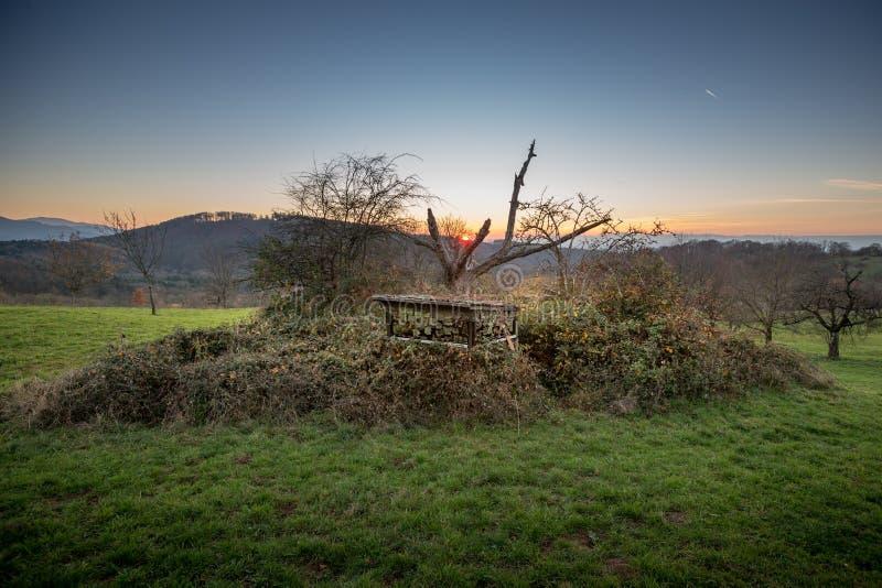 As cortinas do caçador na paisagem alemão foto de stock