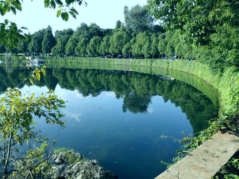 As costas do lago foram alinhadas com grama verde e árvores imagem de stock