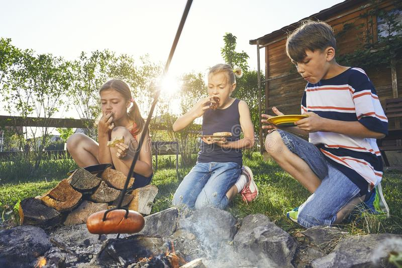 As crianças apreciam a fogueira foto de stock