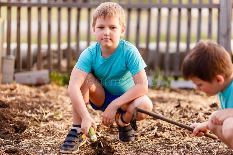 As crianças em camisas azuis estão jogando com a terra no verão, uma pá pequena do ferro fotos de stock royalty free