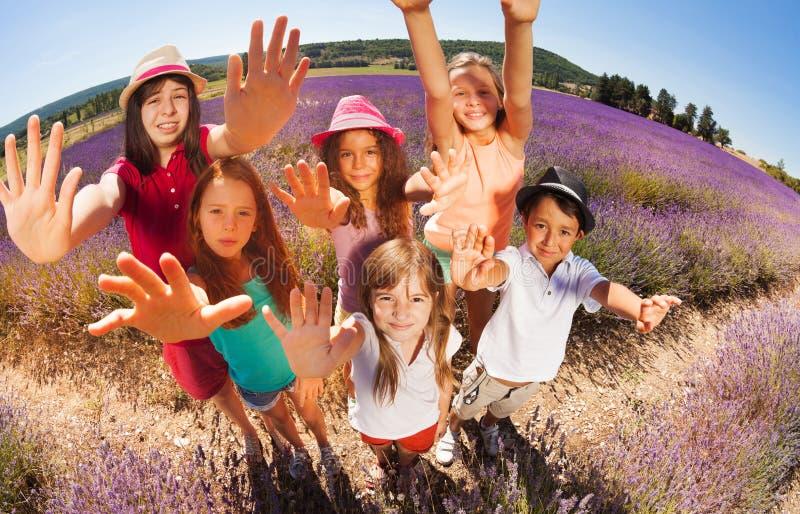 As crianças felizes na alfazema colocam o alcance para fora das mãos foto de stock royalty free