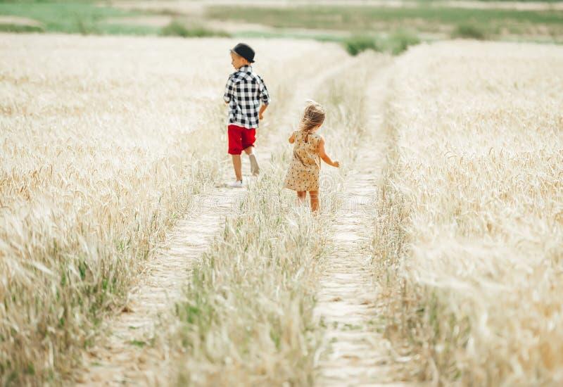 As crianças pequenas bonitos competem ao longo de uma estrada secundária no campo de trigo no dia de verão fotos de stock