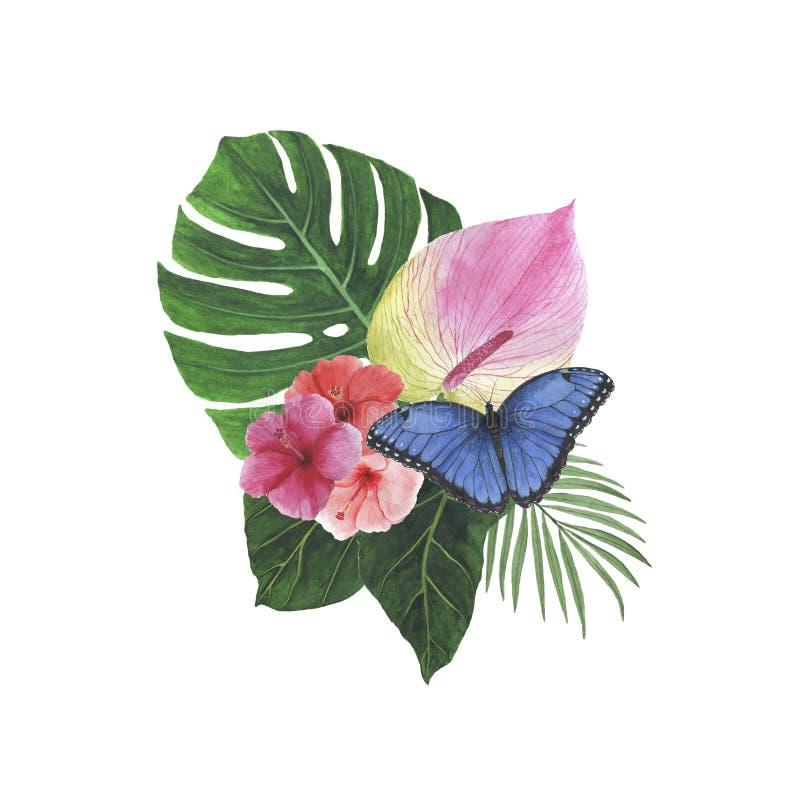 As decorações botânicas da mola da ilustração do quadro da aquarela da palma de Monstera do Plumeria do hibiscus das folhas das f ilustração stock