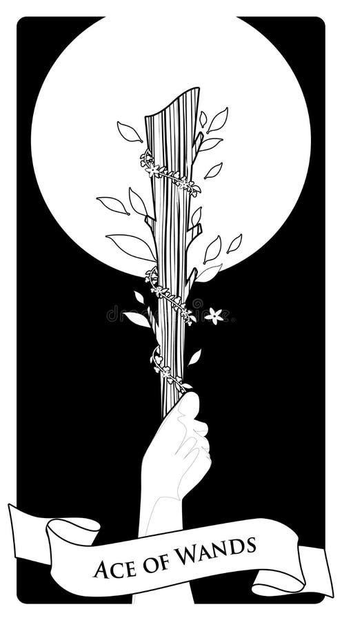 As des cartes de tarot wands Main jugeant une tige entourée par des feuilles et des fleurs sur le fond noir illustration stock