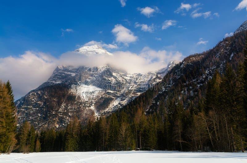 As dolomites italianas em um dia de inverno ensolarado, neve da montanha de Cristallo no primeiro plano, foto de stock royalty free