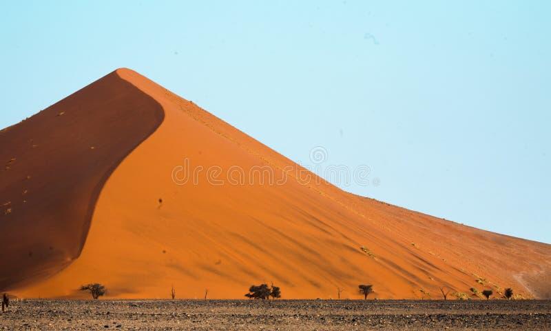 As dunas de areia da África meridional namibiana do deserto fotos de stock royalty free