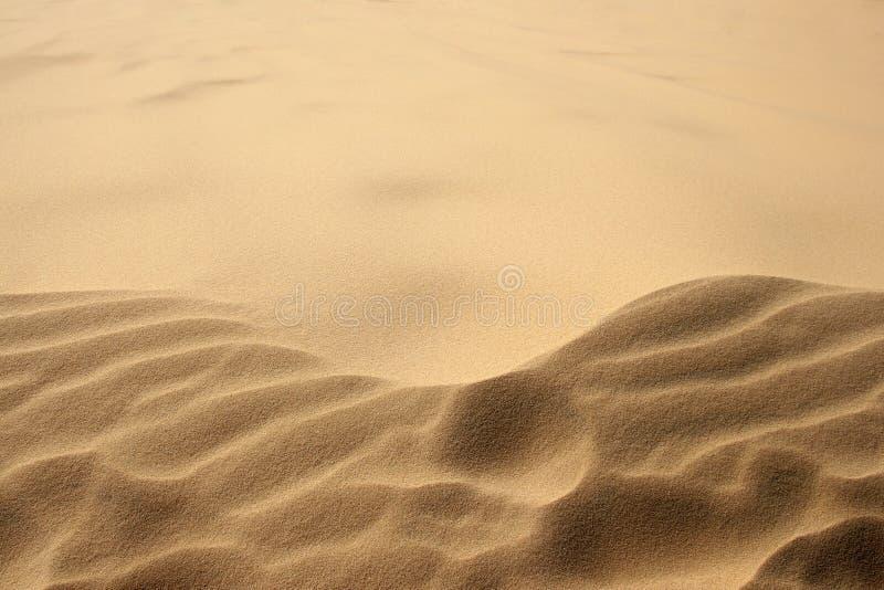 As dunas do ouro da areia acenam em Vietname, Mui Ne imagem de stock
