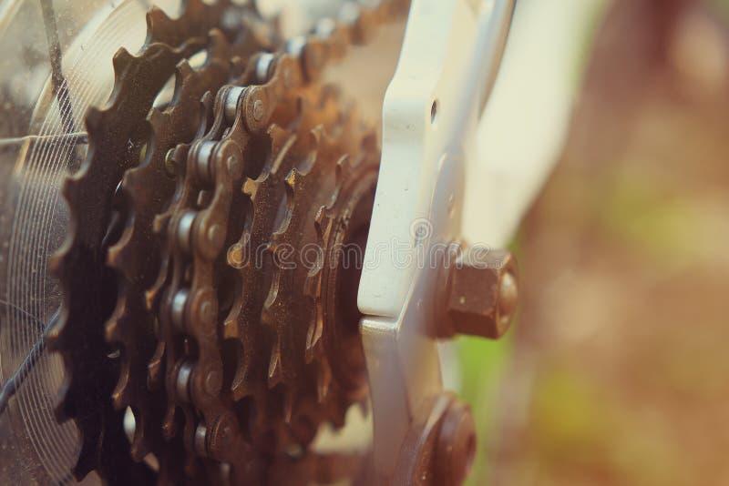 As engrenagens dos asteriscos de um close-up da bicicleta em um fundo de uma floresta verde fotos de stock