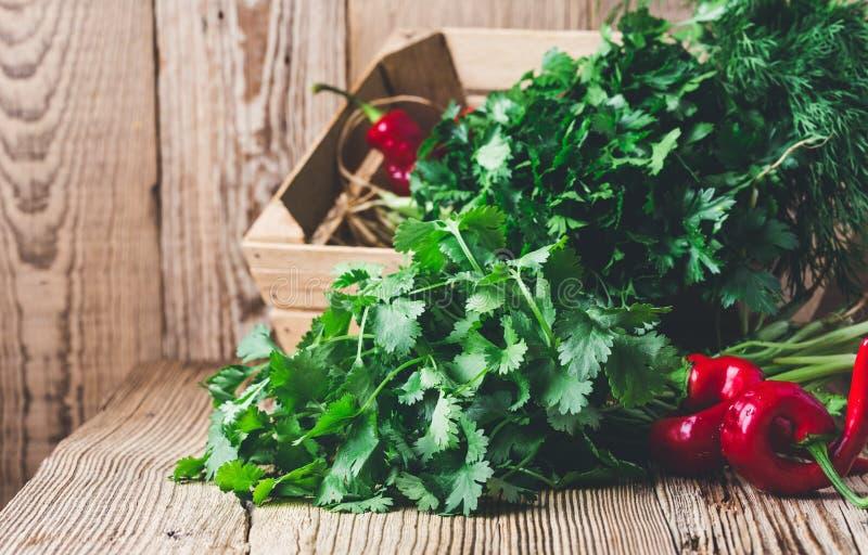 As ervas caseiros frescas, pimentas vermelhas quentes, planta basearam o alimento, produto local foto de stock royalty free