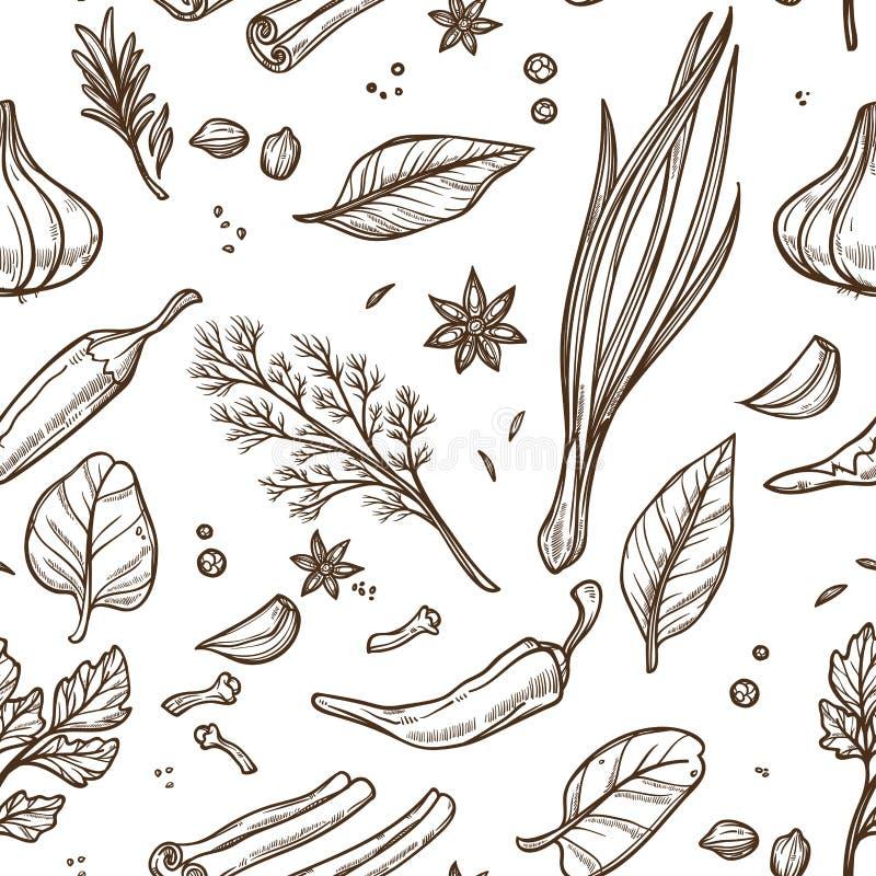 As ervas e as especiarias esboçam o teste padrão sem emenda que cozinha o tempero ilustração stock