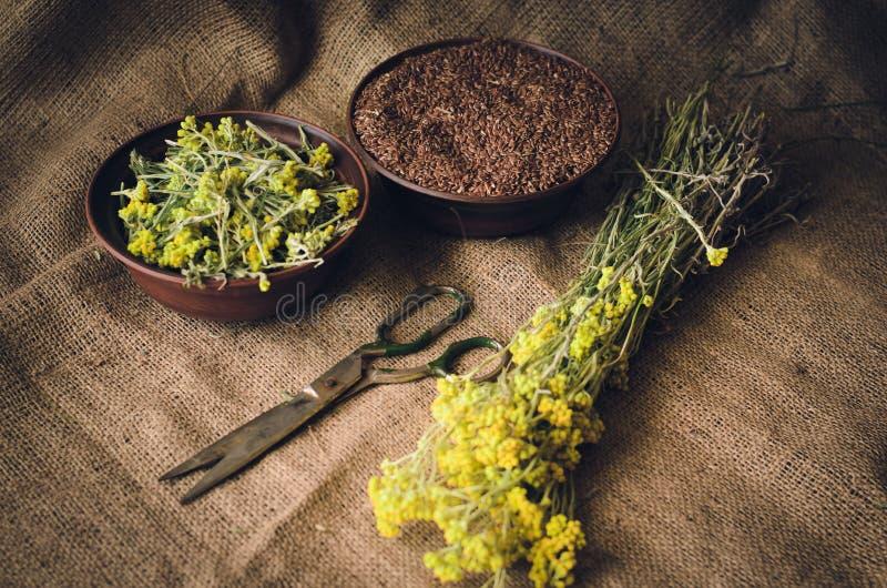 As ervas e as sementes encontram-se na tabela ao lado do caderno e do ábaco de madeira Estilo r?stico do vintage Foco macio fotografia de stock royalty free