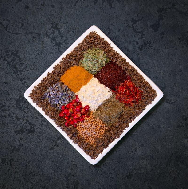 As ervas e as sementes secadas coloridas das especiarias em uma placa quadrada centraram-se em uma obscuridade - fundo azul foto de stock