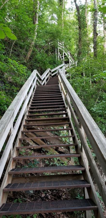 As escadas conduzem para cobrir das quedas em quedas de Amicalola imagens de stock royalty free
