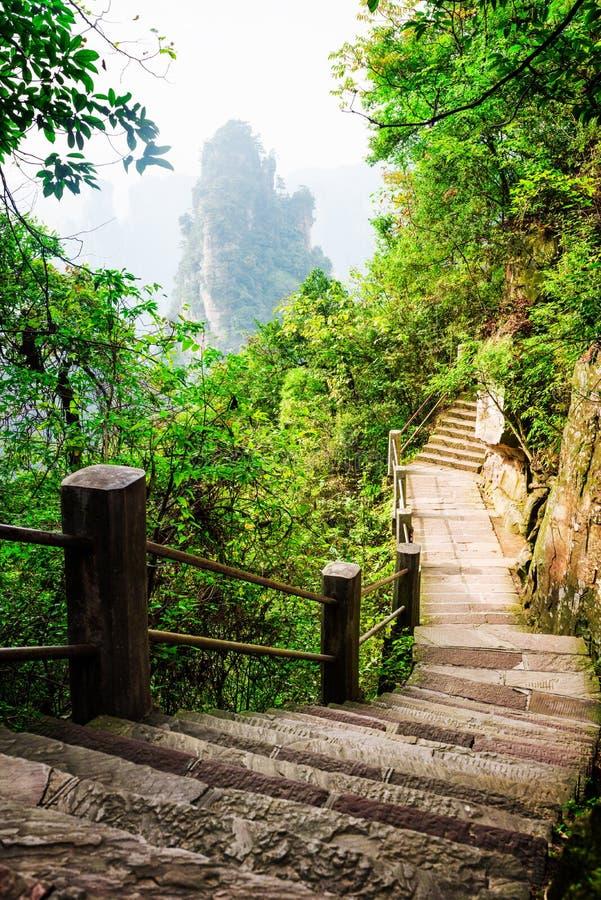 As escadas de pedra cênicos que conduzem ao longo do Avatar do penhasco íngreme balançam imagem de stock royalty free