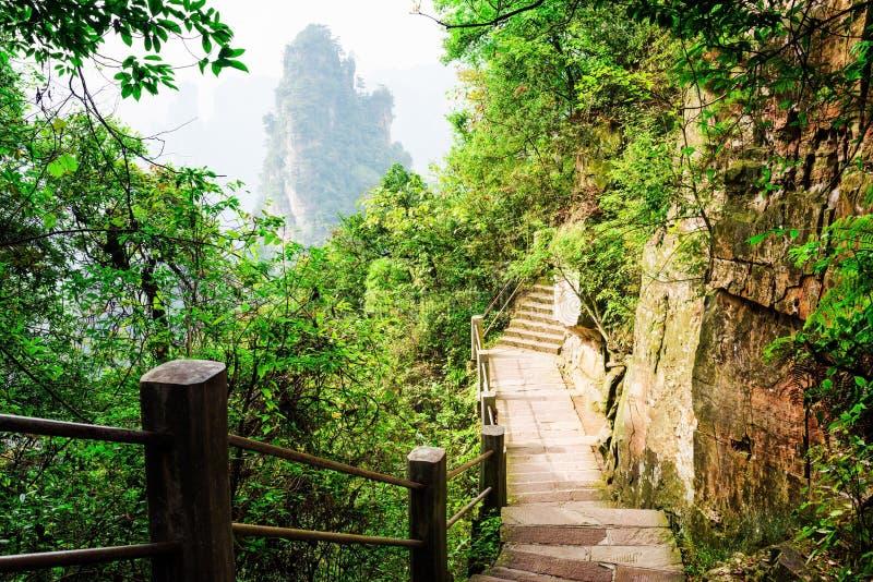 As escadas de pedra que conduzem ao longo do Avatar do penhasco íngreme balançam fotos de stock royalty free