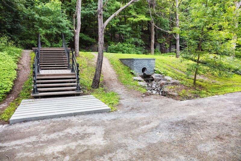 As escadas, as gramas verdes e as árvores no parque real da montagem em Montreal, Canadá imagem de stock