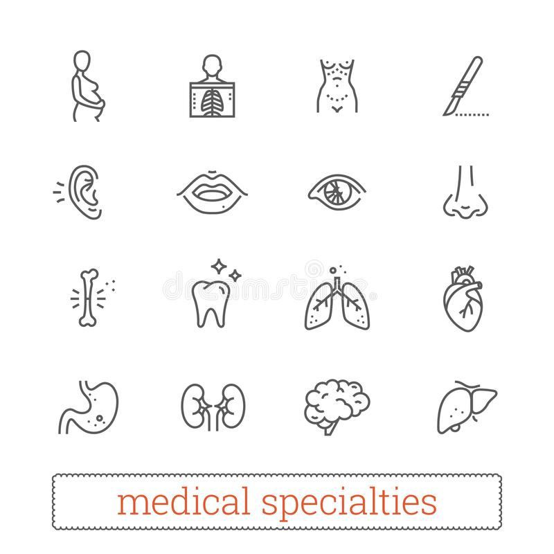 As especialidades da medicina diluem a linha ícones: diagnóstico, médico, cirúrgico Órgãos dos sistemas do corpo humano, os inter ilustração stock