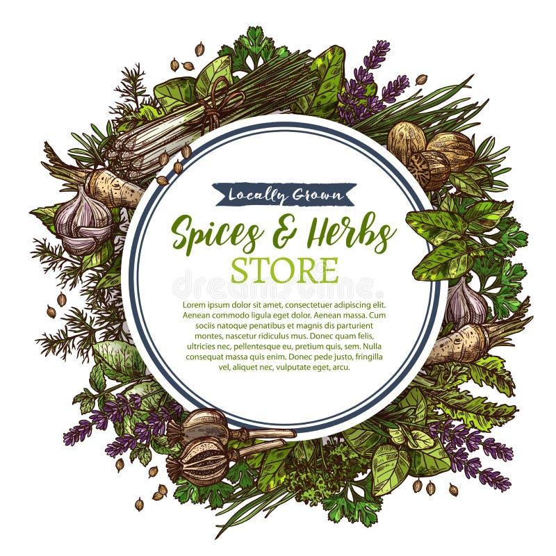 As especiarias e as ervas cultivam o cartaz do esboço do vetor da loja ilustração royalty free