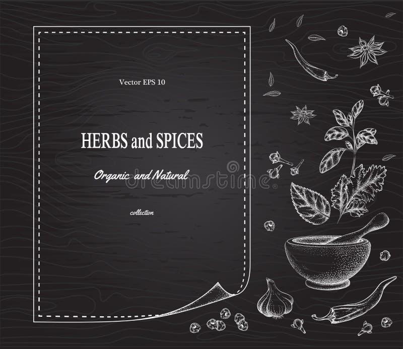 As especiarias e as ervas no fundo enegrecem a placa ilustração royalty free