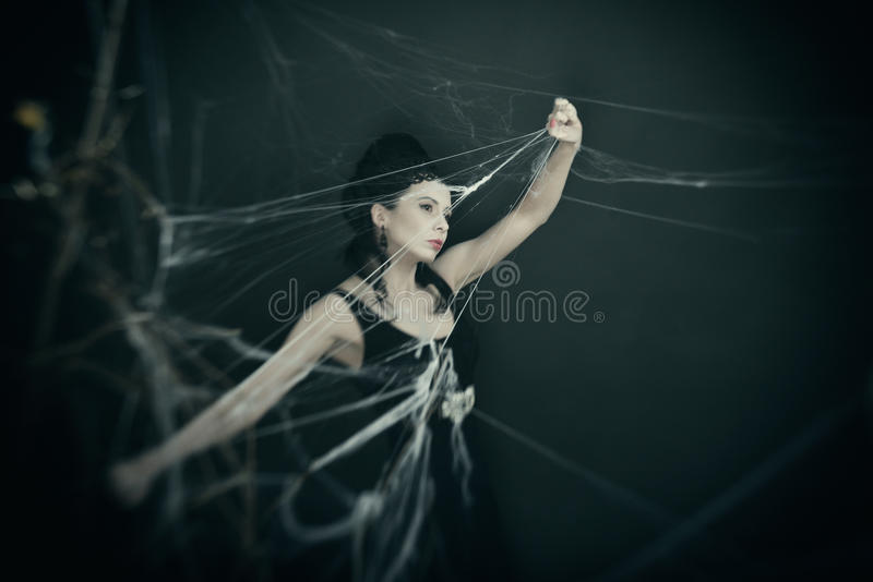 As espreitadelas da bruxa com a Web imagem de stock royalty free
