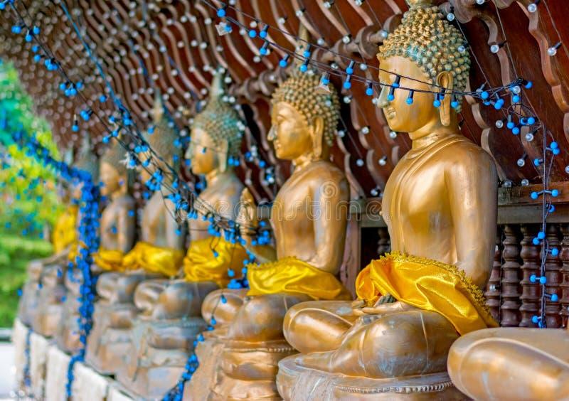 As estátuas do templo de Seema Malakaya At The Gangarama imagem de stock