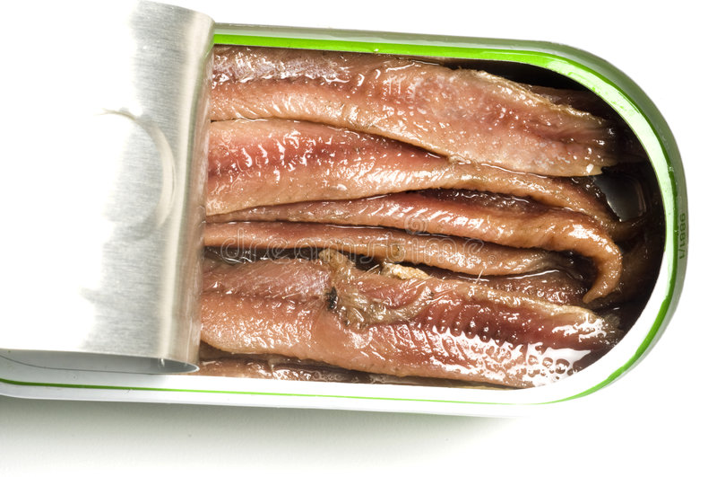 As faixas lisas das anchovas podem dentro imagem de stock royalty free