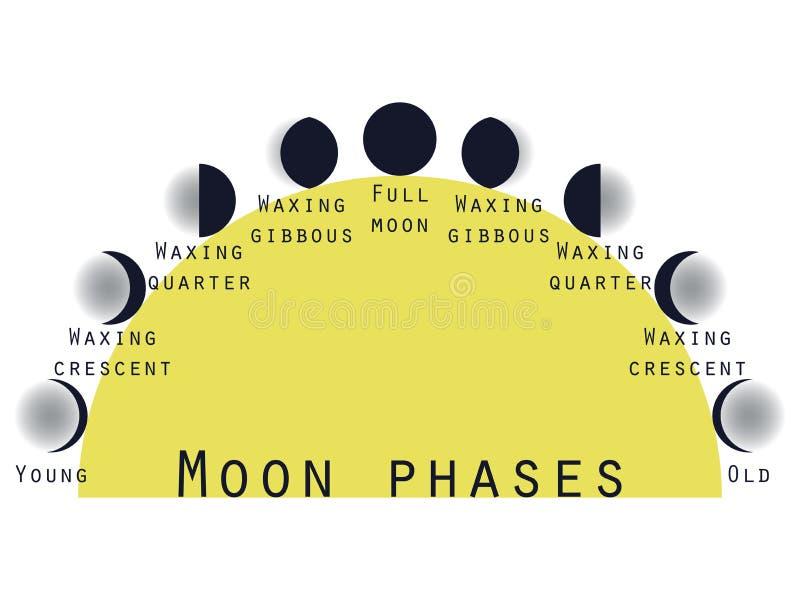 As fases da lua Fase lunar Fases da lua ilustração do vetor