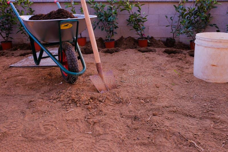 As ferramentas para plantar uma conversão: pá e carrinho de mão Photinia vermelho fotografia de stock royalty free