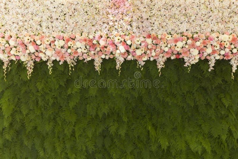As flores bonitas com samambaia verde saem do fundo Beautif da parede imagens de stock royalty free