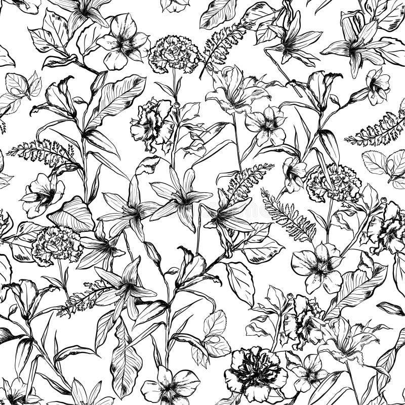 As flores botânicas preto e branco no jardim entregam tirado pelo pe ilustração royalty free